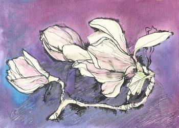 natura-magnolia